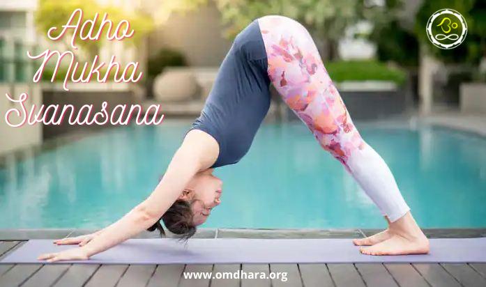 Benefits-And-Importance-Of-Adho-Mukha-Svanasana- Best Article